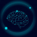 Como as drogas agem no sistema nervoso?