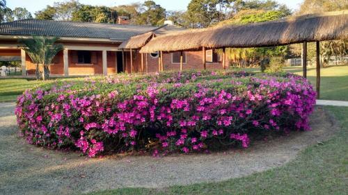 Clínica de Reabilitação Feminina em Mairiporã
